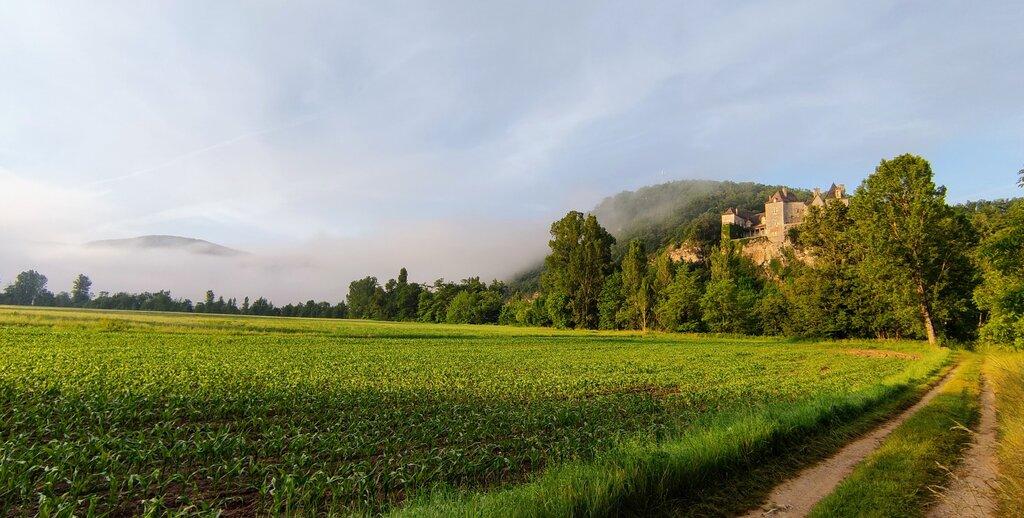 Cenevieres chateau dawn.jpg