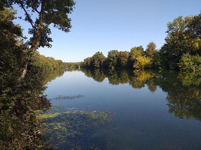 River Charente Sireuil Swim 2.jpg