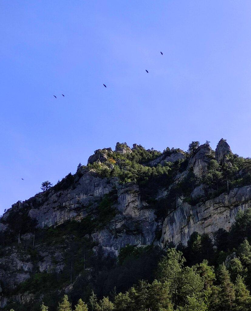 Vultures Tarn.jpg