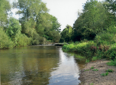Barbel Fisheries